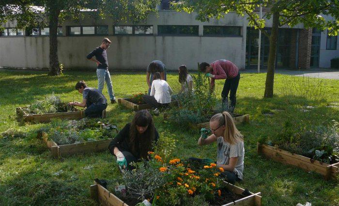Entretien-d'un-jardin